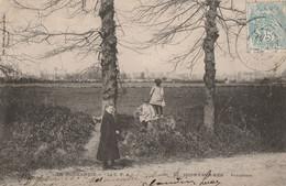 CARTE POSTALE ORIGINALE ANCIENNE : ISIGNY SUR MER LE PANORAMA EN 1904  ANIMEE CALVADOS (14) - Autres Communes