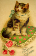 CPA   CHATS . PETIT CHAT AU NOEUD BLEU SUR SON COUSSIN . 1938 . CUTE CAT WITH BLUE BOW . KITTEN . KATZE . OLD PC - Cats