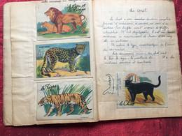 1946-Cahier Sciences écolièreOdette Reynaud Née 1935-☛Calligraphie écriture,dessins,encre-☛École De Provence(Marseille) - Sonstige