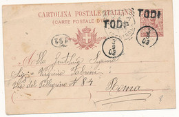 1903 TODI LINEARE + DITALE CON DATA ANNULLATORI UNICI PROVVISORI  DI CARTOLINA POSTALE - Marcophilie