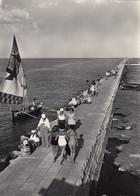 SOTTOMARINA-VENEZIA-DIGA DEL PORTO- CARTOLINA-VERA FOTOGRAFIA VIAGGIATA-1952-1957 - Venezia