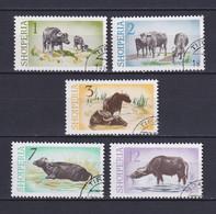 ALBANIA 1965, Mi# 921-925, Animals, Used - Albania