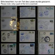 ANTARKTIS 1997-2001, Antarktis Expeditionen, 100 Verschiedene Belege, Meist Deutsche Institute, Im Spezialalbum, Pracht - Unclassified