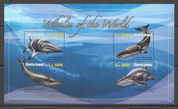 ZZ631 2010 SIERRA LEONE FAUNA FISH & MARINE LIFE WHALES OF THE WORLD KB MNH - Balene