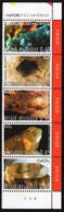 Belgium - 2003 - Minerals - Mint Stamp Set (se-tenant Strip) - Unused Stamps