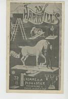"""SPECTACLE - CIRQUE - CIRCUS - """" HARRY WILLS L'Homme à La Peau D'acier """"  (représentation Du 21/06/1921 à BÉDARIEUX ) - Cirque"""