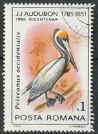 Timbre Oblitéré N° 3578(Yvert) Roumanie 1985 - Oiseau, Pélican Brun, Audubon - Usati