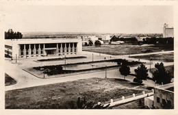 PORT-LYAUTEY - (Kénitra - Maroc) - Place De L'Hôtel De Ville - Cpsm écrite En 1949 - Bon état - 2 Scans - Non Classificati