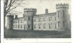 THE CASTLE - DUNGIVEN - LONDONDERRY - POSTALLY USED 1908 - - Londonderry