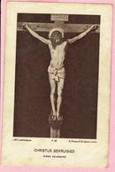 Bidprentje - AUGUST VAN DEN BRANDT - Priesterwijding Mechelen - EEREMIS Kasterlee 1934 - Imágenes Religiosas