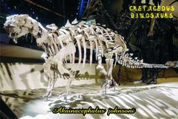 Carte Postale, Animaux Prehistoriques, Cretaceous Dinosaurs, Akainacephalus Johnsoni (skeleton) - Altri