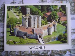 2013 Sagonne Cher, Château - Sancoins