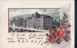 Biel Bienne BE, Technikum, Armoirie Et Houx, Litho Gaufrée (6.9.1900 U) - BE Berne
