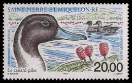 St. Pierre & Miquelon 1999 - Mi-Nr. 776 ** - MNH - Vögel / Birds - Ongebruikt