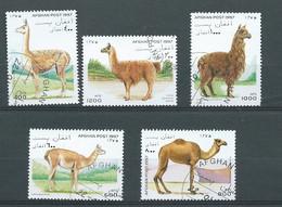 Afghanistan  -  Année 1997 ,  5  Timbres Oblitéré   Chameaux , Lamas  Divers    - Po 65506 - Afghanistan