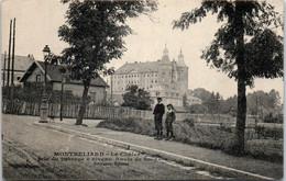 25 MONTBELIARD - Le Château Depuis La Route De Sochaux - Montbéliard