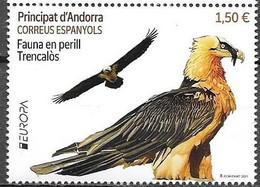 SPANISH ANDORRA , 2021, MNH, EUROPA, ENDANGERED SPECIES, BIRDS, BIRDS OF PREY, 1v - 2021