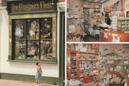 The Magpies Nest Teddy Bear Shop Canterbury Rare Postcard - Spielzeug & Spiele