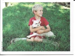 Calendrier De Poche Petit 2005 Enfant Agneau - Small : 1961-70