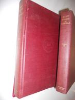 Eight Essays On JOAQUIN SOROLLA Y BASTIDA 2 Tomes 1909 New York The Hispanic Society Of America Valencia Madrid - Belle-Arti