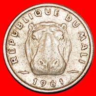 * HIPPO: MALI ★ 5 FRANCS 1961 UNCOMMON! LOW START ★ NO RESERVE! - Mali (1962-1984)