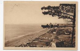 (RECTO / VERSO) CAROLLES EN 1951 - VUE PANORAMIQUE - BEAU CACHET - FORMAT CPA VOYAGEE - Other Municipalities