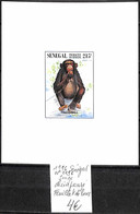 NB - [838706]TB//**/Mnh-Sénégal 1996 - N° 1196, Feuillet De Luxe, Singes, Chimpanzés - Chimpanzees