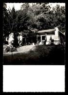 92 - CHAVILLE - LES PETITS FONDS CRAMOISIS - Chaville