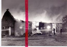 Foto Persfoto - Verrebroek Wijk 't Zwaantje - Brand Bij Landbouwer Th. Van Wiele, Brandweer Beveren - 17 Aug  1981 - Sin Clasificación