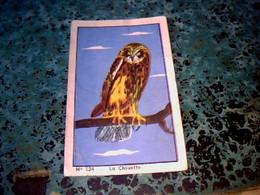 Vieux Papier Chromos Image Produits Casino N°124 Pour L'album Le Ciel & Ses Merveilles Oiseau La Chouette - Otros