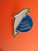 Pins  Sport  C.S.C. NIMES Gard - Plongée - Dauphin - Immersione