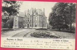 C.P. Ronse =  Château  De  CALMONT - Renaix - Ronse