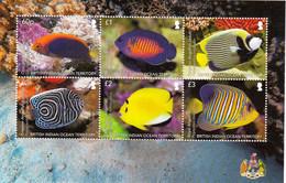 BIOT British Indian Ocean Territory 2021 Marine Fauna Fishes Minisheet MNH - Fishes