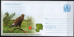 Belarus 2021 Postal Stationery Cover Wetland Reserve  Stary Zhaden Greater Spotted Eagle Wildlife Bird Birds - Aigles & Rapaces Diurnes
