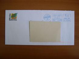 EMA Sur Enveloppe  HJ 395688 ORVAULT  Avec Illustration  ERDRE & GESVRES - EMA (Printer Machine)