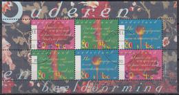 NIEDERLANDE  Block 53, Gestempelt, Sommermarken: Seniorenarbeit – Vorbild Sein, 1997 - Bloks