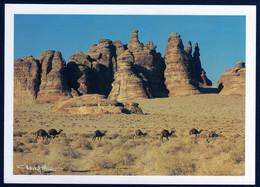 Saudi Arabia Al Ula Madain Saleh Wind Erosion In The Desert Géologie Photo Tchekof Minosa 1980 TB - Saudi Arabia