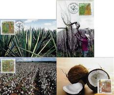 Brazil 2010 Complete Series 4 Maximum Card Stamp Flora Textile Plant Cotton CoconutJute And Sisal - Otros