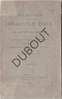 Vogelenzang/Anderlecht Mirakuleuze Beeld OLV 1870 (R219) - Antique