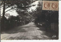 Carnac Avenue De Port En Dro - Carnac