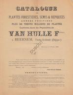 BEERNEM/Brugge Catalogue De Plantes Forestières -Pépinières Van Hulle 1899 (N853) - Antique
