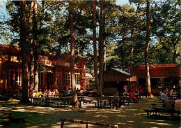 77 - Fontainebleau - Forêt De Fontainebleau - Carrefour Du Bas Bréau - Le Chalet De La Caverne - Carte Neuve - CPM - Voi - Fontainebleau