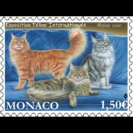 Monaco 2021 Cats MAINE COON Katzen Gatos Gatti Chat Pets Animals 1v Mnh - Neufs
