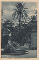 9290) PALERMO - Palmizi Nell` Orto Botanico - OLD !! - Palermo