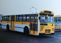 BUSSEN NR 1004 Pegaso 6035 Bouwjaar  1976 (035) - Buses & Coaches