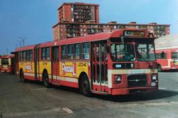BUSSEN NR 1004 Pegaso 6035 A Bouwjaar 1989  (053) - Buses & Coaches