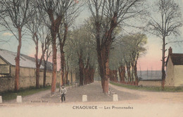 CHAOURCE - LES PROMENADES - TRES BELLE CARTE - COLORISEE - PETITE ANIMATION - 2 SCANNS - TOP !!! - Chaource