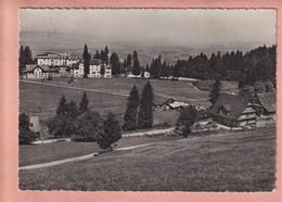 OUDE POSTKAART - ZWITSERLAND - 10 X 15 CM -    RESTAURANT VORDERGEISSBODEN - 1956 - ZG Zoug