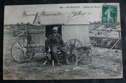 CPA Loiret - Beauce - 294. Cabane De Berger – Moutons Chiens – Animée – A Voyagé. - Unclassified