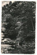 CPA-Carte Postale Belgique Malmedy- Pouhon Des Cuves 1953  VM37247 - Malmedy